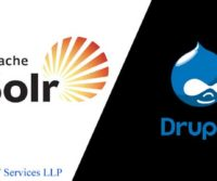 Drupal Solr Search